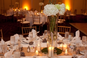 Guest tables with Hydrangea and branch centerpieces