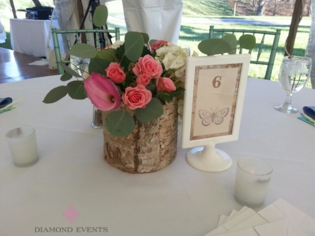 Centerpiece in birch wood containers
